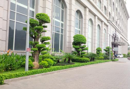 Cảnh quan tòa nhà