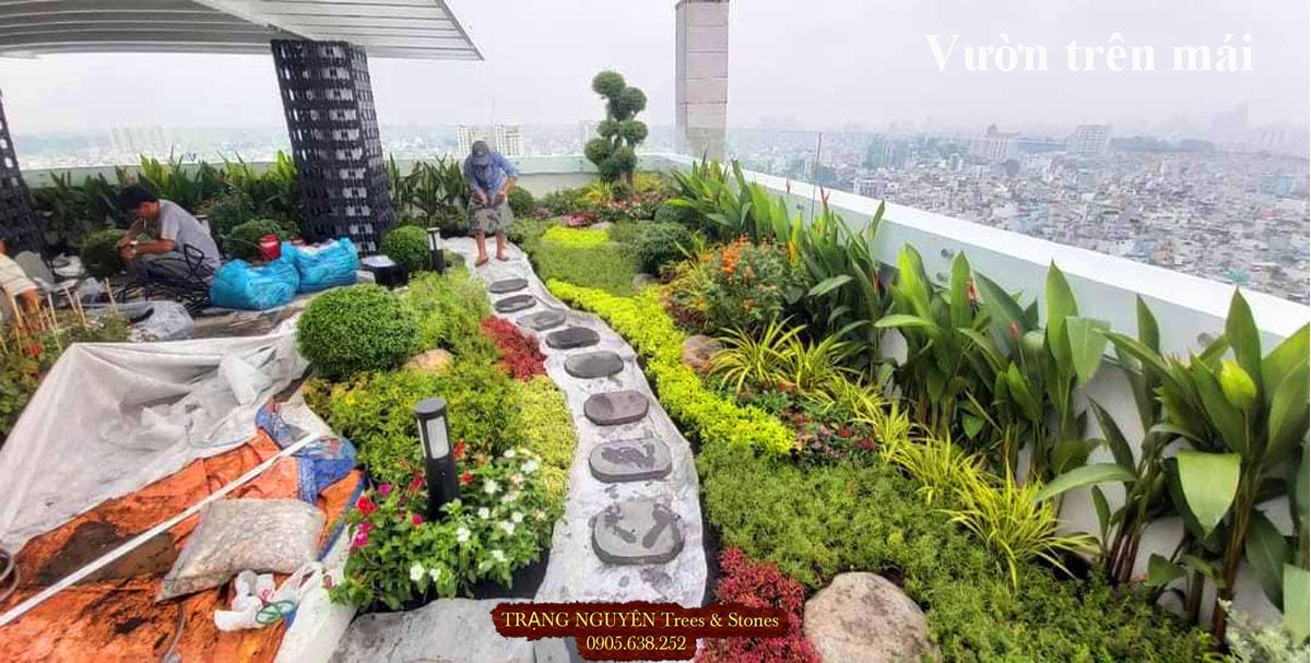 Thi công vườn trên mái số 1