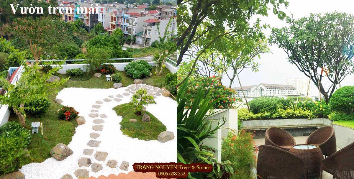 Thiết kế vườn trên mái